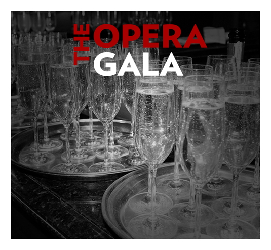 THE OPERA GALA | SEP 29, 2018 | Boston Lyric Opera